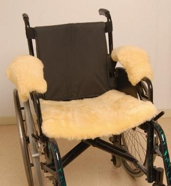 asiento silla